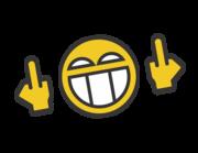 Lieferansicht Autoaufkleber FO Smiley XS