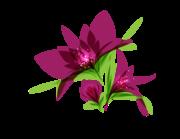 Lieferansicht Autoaufkleber Blume Cassia XS