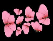 Lieferansicht Autoaufkleber Fuchsia Butterflies XS