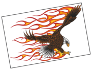 Lieferansicht Autoaufkleber Burning Bald Eagle XS