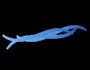 Lieferansicht Bootsaufkleber Welle Mauritius XS