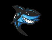 Lieferansicht Bootsaufkleber Haifisch Chucky XS