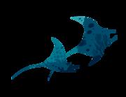 Lieferansicht Bootsaufkleber Blaue Mantarochen XS
