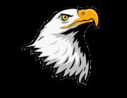 Lieferansicht Bootsaufkleber Eagle Head XS