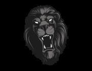 Lieferansicht Bootsaufkleber Black Lion Head XS
