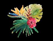 Wandtattoo Tropical Bouquet Lieferansicht