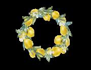 Wandtattoo Zitronen Kranz Citrea Lieferansicht