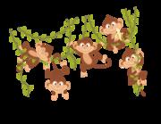 Wandtattoo Affenbande mit Lianen Lieferansicht