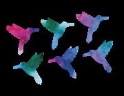 "Wandtattoo ""Kolibri Watercolor"" Lieferansicht"