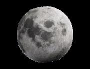 Lieferansicht Wandtattoo Full Moon
