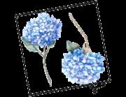 Lieferansicht Wandtattoo Blaue Hortensien Aquarell