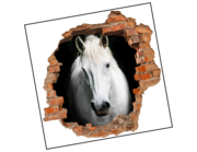 Lieferansicht 3D Wandtattoo Pferd Zoltan