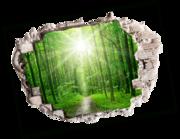 Lieferansicht 3D Wandtattoo Green Forest