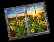 Lieferansicht 3D Wandtattoo Sunflower Field