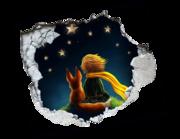 Lieferansicht 3D Wandtattoo Little Prince