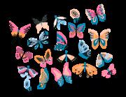 Lieferansicht Wandtattoo Colorful Butterflies