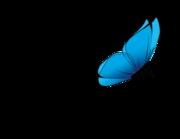 Lieferansicht Wandtattoo Papillon Bleu