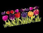 Lieferansicht Wandtattoo Majestic Tulips