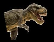 Lieferansicht Wandtattoo Tyrannosaurus Rex