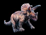 Lieferansicht Wandtattoo Triceratops