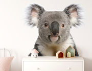 Wandtattoo Koala Apanie