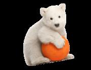 Lieferansicht Wandtattoo Eisbär Baby Wolle