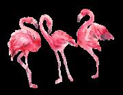 Lieferansicht Wandtattoo Watercolor Flamingos