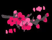 Lieferansicht Wandtattoo Kirschblütenzweig Sakura