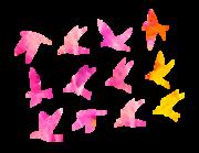 Lieferansicht Wandtattoo Color Fantasy Birds