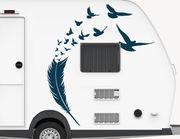Autoaufkleber Feather of Birds