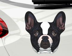Autoaufkleber Französische Bulldogge Sparky