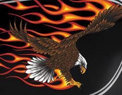 Autoaufkleber Burning Bald Eagle