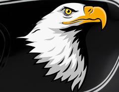 Autoaufkleber Eagle Head