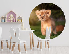 Wandtattoo Löwenbaby Jima