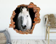 3D Wandtattoo Pferd Zoltan