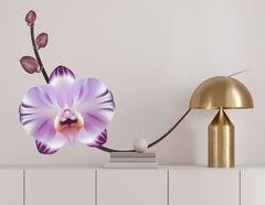 Wandtattoo Orchidee Violetta