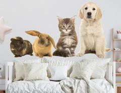 Wandtattoo Kleine Tierfreunde