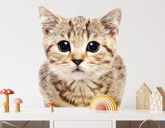 Wandtattoo Katze Mojo