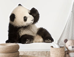 Wandtattoo Panda Baby Bao Tao