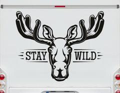 Autoaufkleber Stay Wild