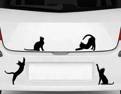"""Autoaufkleber """"Kätzchentreff"""" für tierliebe Katzen-Fans"""