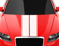 Autoaufkleber Racing Stripes #3
