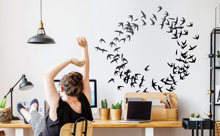 Wandtattoos mit Vögeln & Schmetterlingen sind beflügelnd schön!