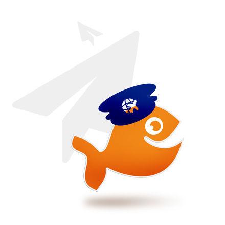 Flugzeug beschriften – Klebebuchstaben für Cessna, Piper & Co.